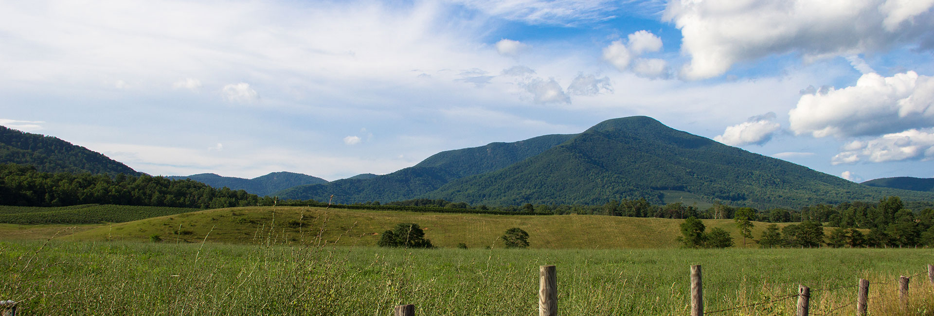 Horse field with the Blue Ridge Mountains in the background